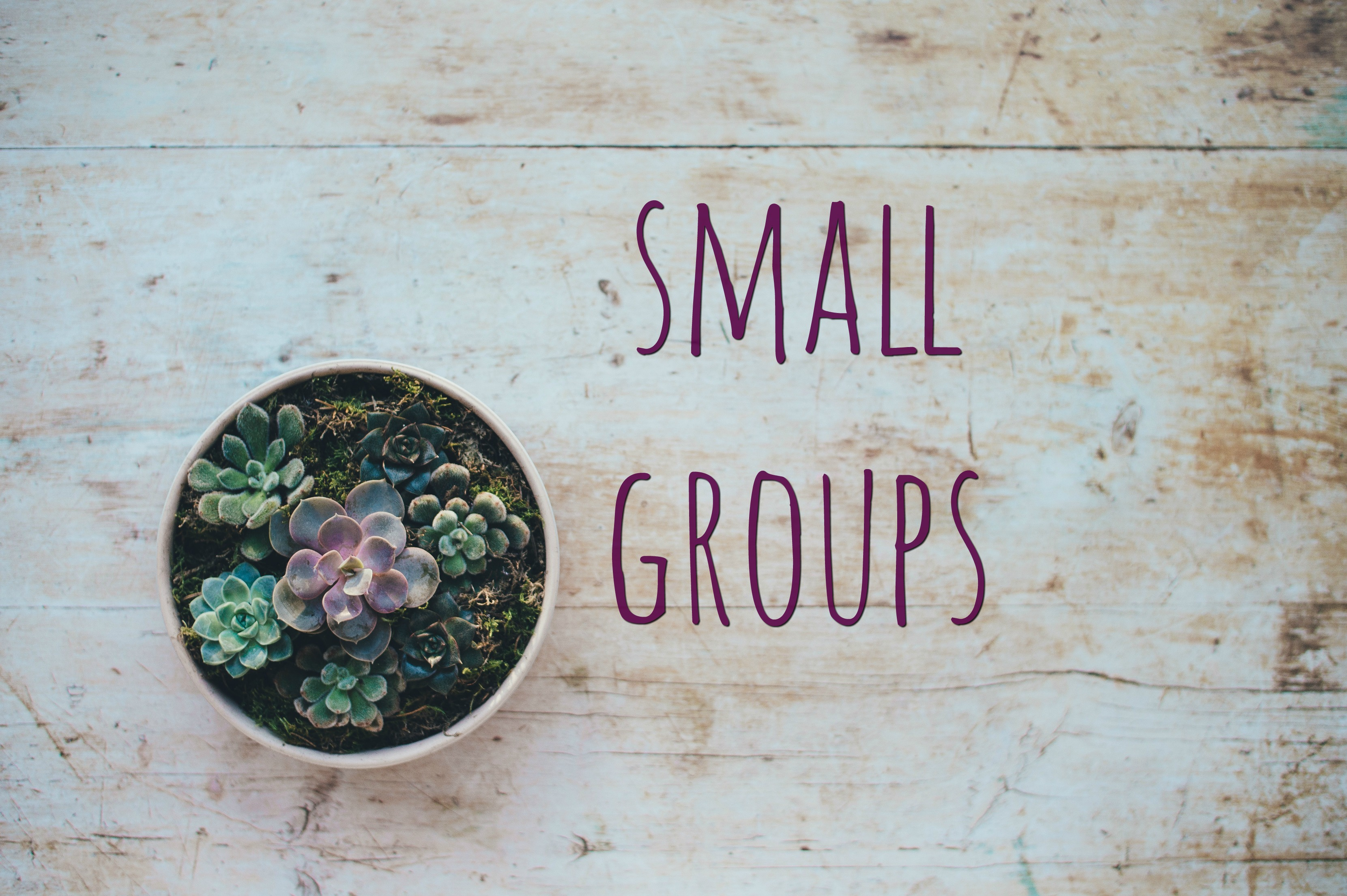 Small-Group-Graphic-2-1