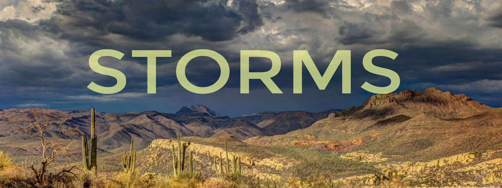 rev-slider_storms_text
